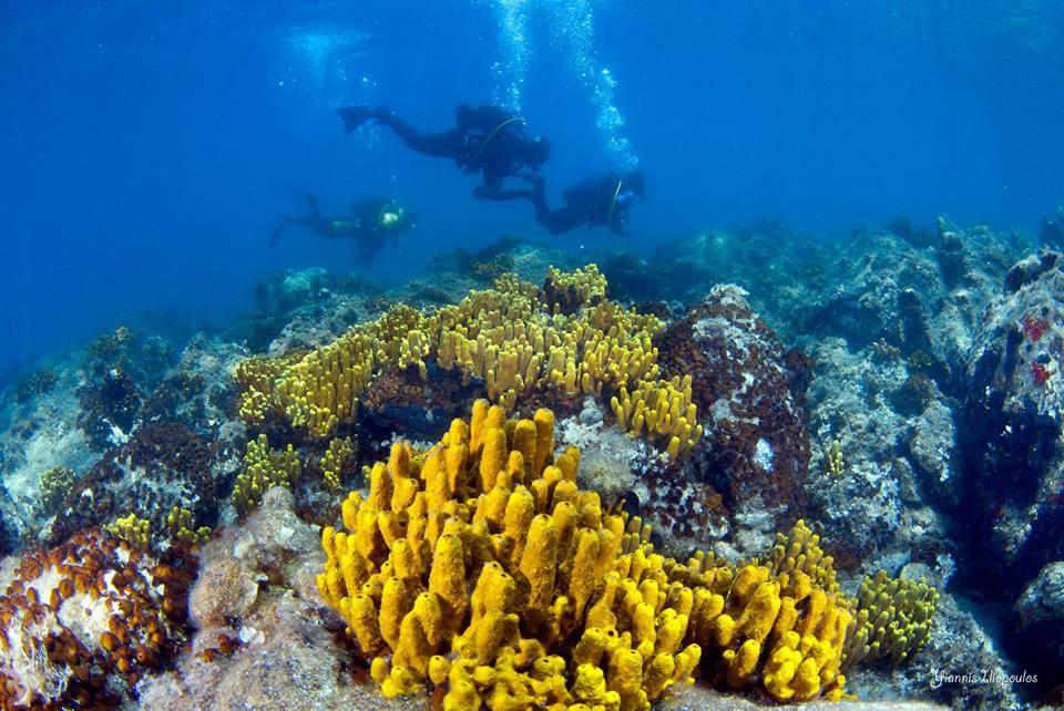 Dias Dive Site