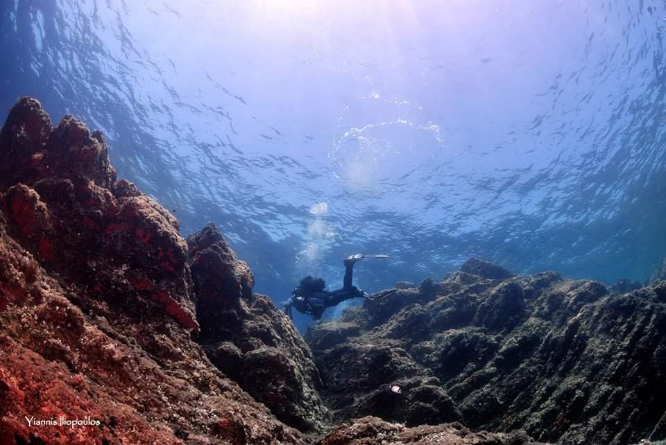 Halkidiki diving in Drenia Dive site